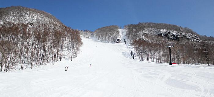 リゾート 水上 高原 スキー