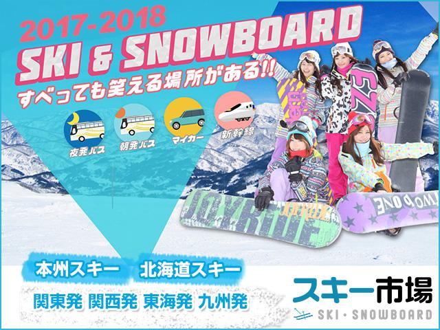 スキーツアー・スノボーツアースキー市場