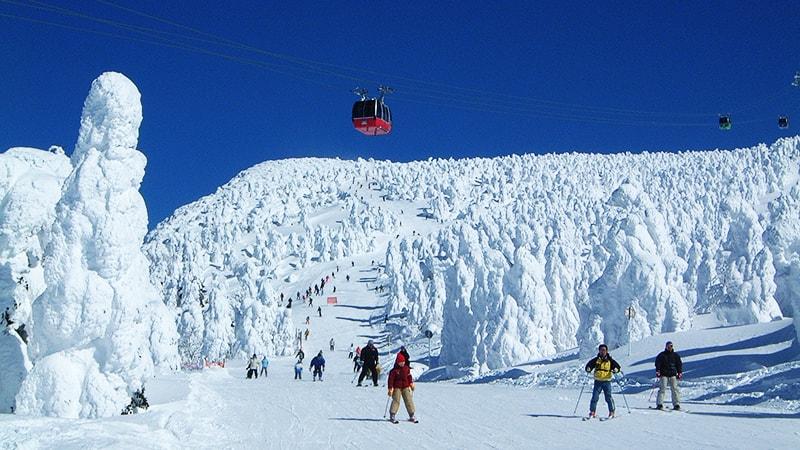 蔵王温泉スキー場 樹氷原コース
