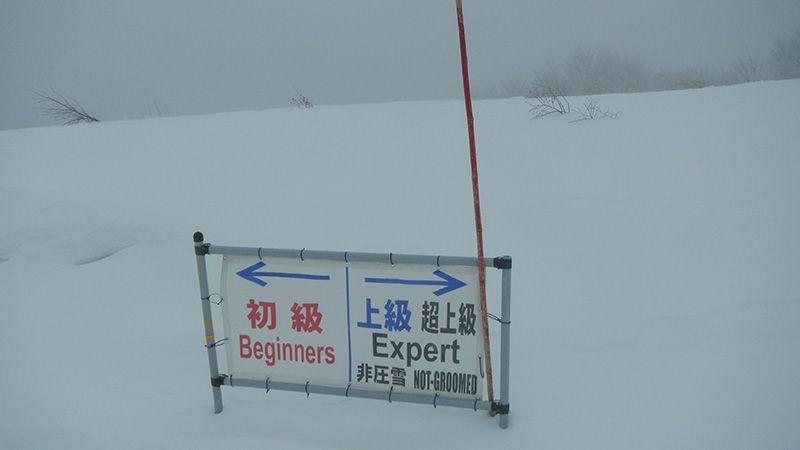 有名スキー場を攻略せよ! 長野 白馬編 白馬コルチナ 上級者編